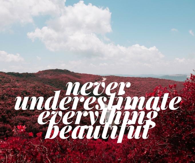 never underestimate everything beautiful