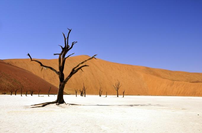 desert-spirituality-purpose