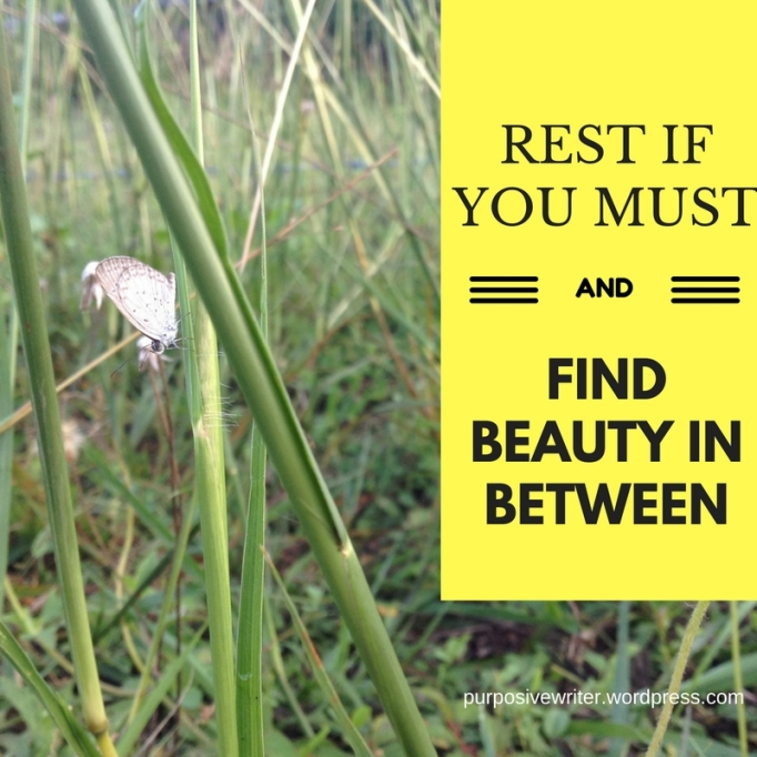 rest if you must and find beauty in between